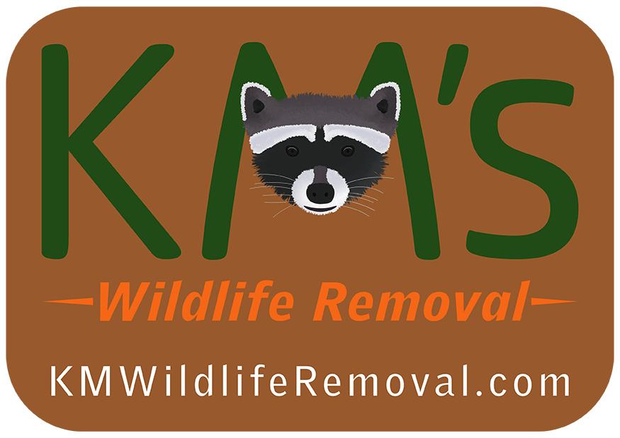 KM Wildlife Removal Logo